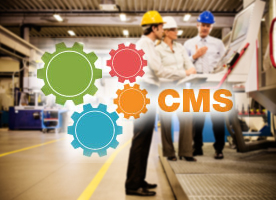 CMS ERP Application Support and Managed Services